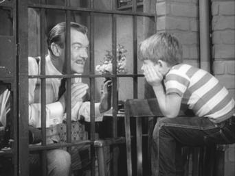 The Andy Griffith Show: Season 1: Andy and the Gentleman Crook