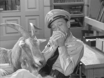 The Andy Griffith Show: Season 3: The Loaded Goat