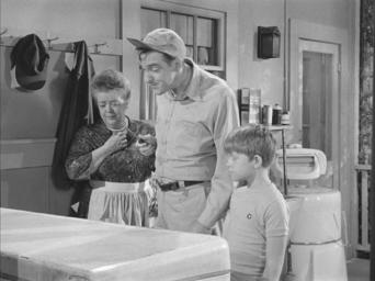 The Andy Griffith Show: Season 4: Bargain Day