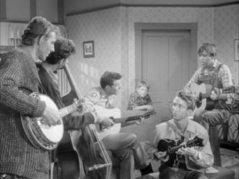 The Andy Griffith Show: Season 4: Briscoe Declares for Aunt Bee