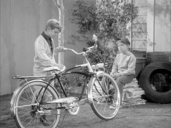 The Andy Griffith Show: Season 3: Opie and the Spoiled Kid